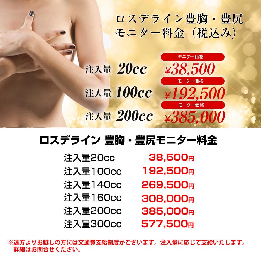 ロスデライン豊胸・豊尻モニター料金